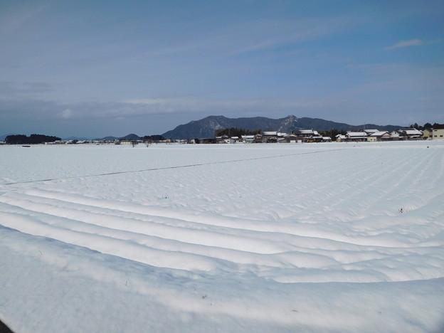 蒲生野雪景 (2)