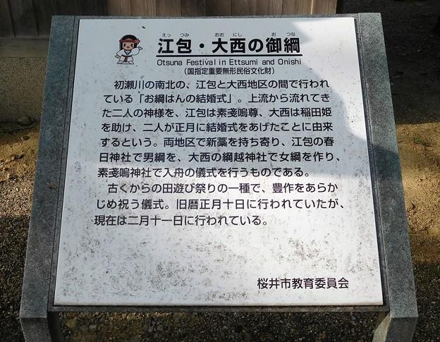 素戔嗚神社 (3)