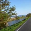 大和川畔の道 (1)