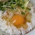 Photos: 正田 特撰丸大豆醤油 二段熟成・・・TKG
