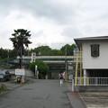 Photos: 栄