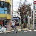 写真: 伏見桃山