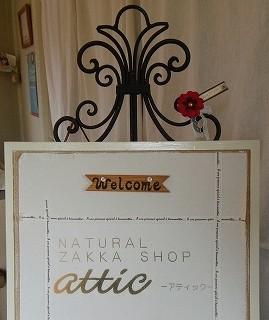 attic (1)