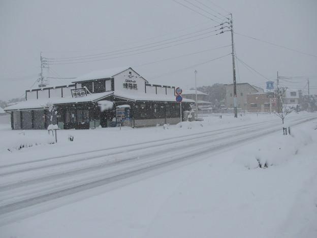 雪の小郡市内(1)