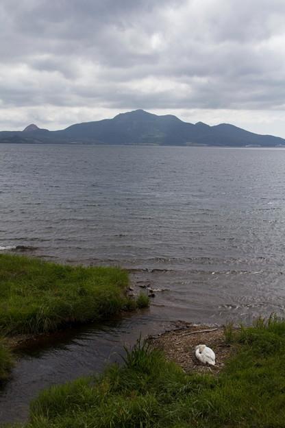 洞爺湖の対岸から昭和新山を望む
