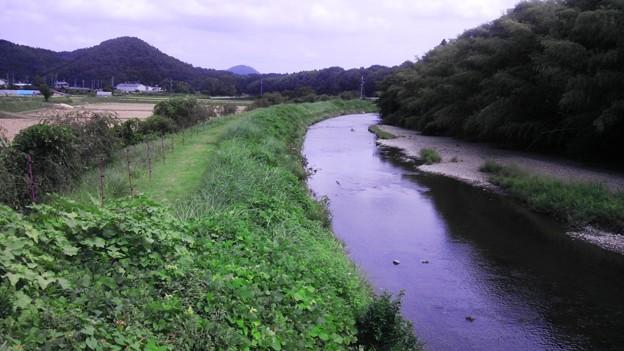 長閑な田舎の風景 (3)