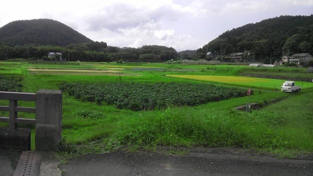 長閑な田舎の風景 (4)