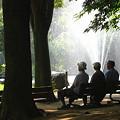 Photos: 憩いの広場。。♪