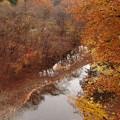 Photos: 渡瀬渓谷の晩秋