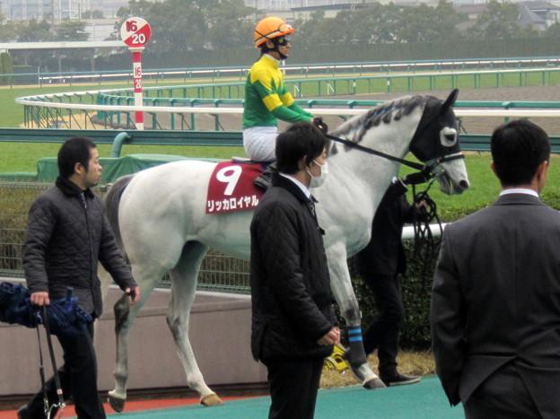 リッカロイヤルと秋山真一郎騎手