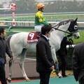 Photos: リッカロイヤルと秋山真一郎騎手