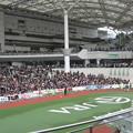 Photos: いよいよメインレース大阪杯のパドック