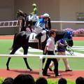 Photos: アドマイヤロケットと川田将雅騎手