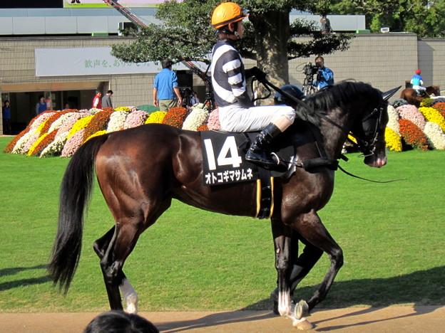 Photos: オトコギマサムネ&北村友一騎手