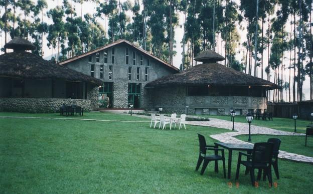 マウンテンゴリラのカフェ ,ルワンダ Mountain Gorilla's cafe,Rwanda