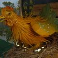 写真: 金招財蛋 Golden Hen & Eggs