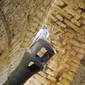写真: 砲身の先端の鳩 Dove on a cannon