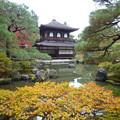 紅葉ずる銀閣寺  Kannon-hall and Pond