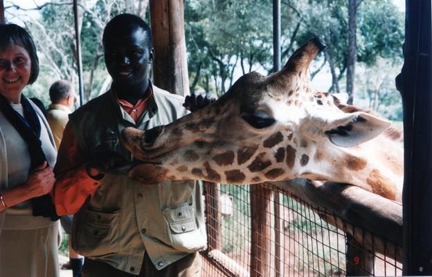 「もっともっとエサモット ♪」 ケニア Giraffe Center,Nairobi