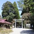 Photos: 天岩戸神社