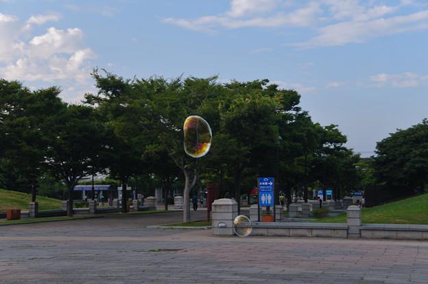 シャボン玉(しゃぼん玉)