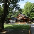 写真: 010武田神社0013