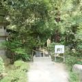 写真: 010武田神社0015
