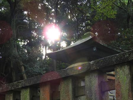 久能山東照宮71