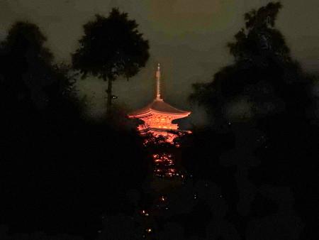 清水寺(夜)36