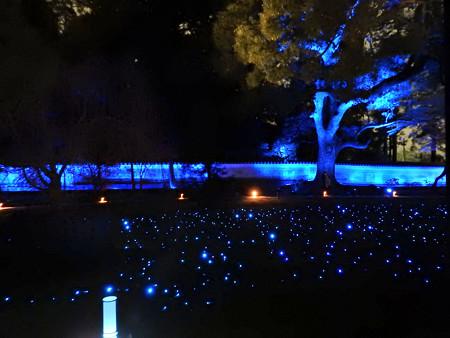 青蓮院門跡(ライトアップ)07