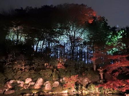 青蓮院門跡(ライトアップ)20