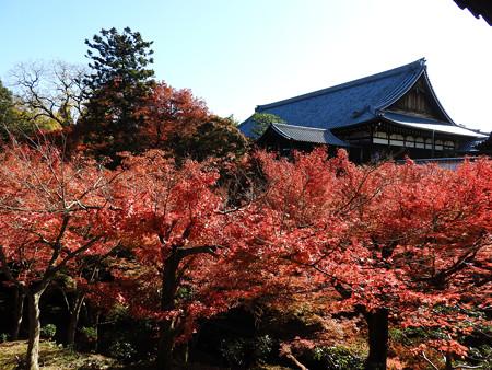 東福寺24