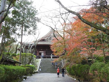 三井寺07 金堂