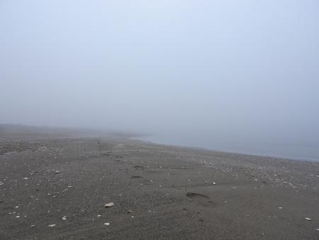 霧の朝 幕張海岸04