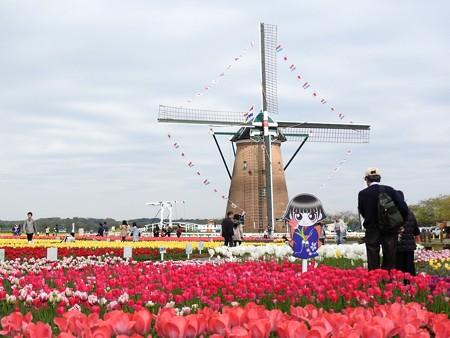 佐倉チューリップフェスタ 01 オランダ風車とカムロちゃん