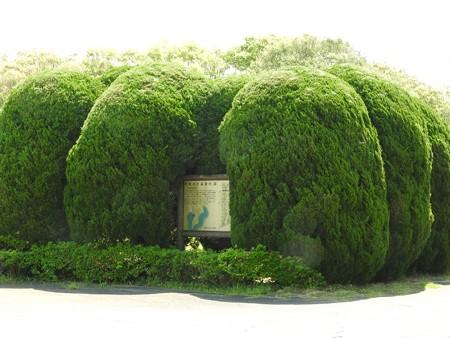 昭和の森19 市町村の森