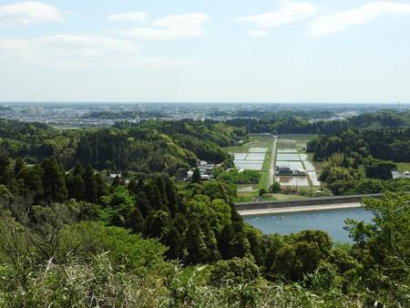 昭和の森35 展望台から