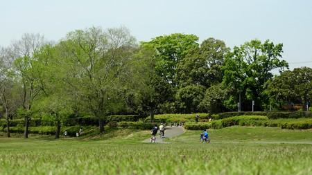 昭和の森 ワイド21 太陽の広場