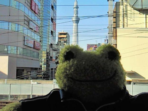 写真: あぁ、買い物に夢中で、でかピクくんと撮りそびれた…。錦糸町駅でス...