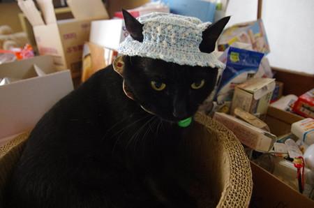 hi-ragiさま帽子~ノエル