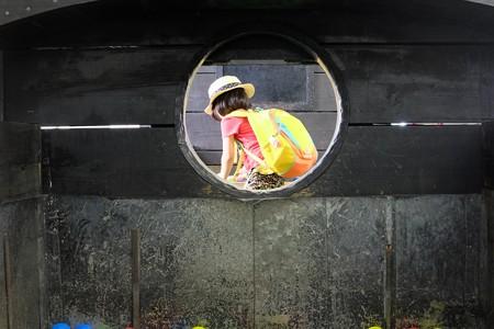2014.07.29 新金谷駅 プラザロコ SL石炭投入訓練