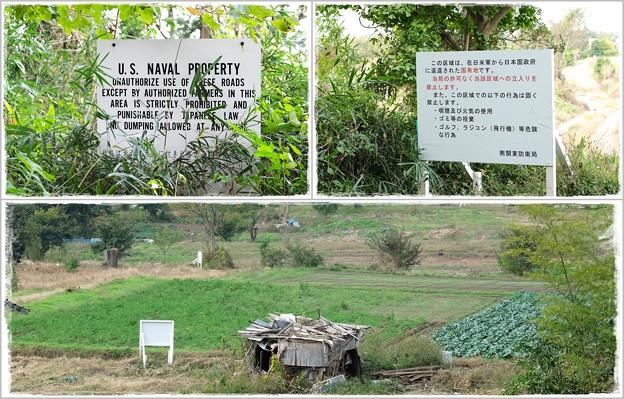 2015.10.30 瀬谷市民の森 二枚の看板 無くなった家庭菜園