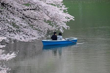 2016.04.01 千鳥ヶ淵 桜話し