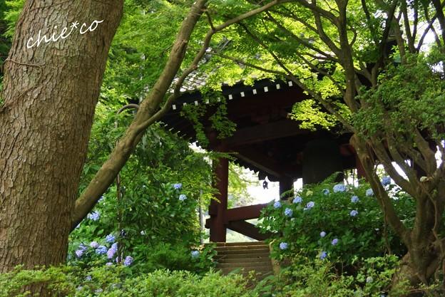 鎌倉-097