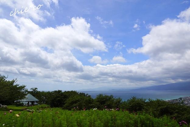 吾妻山公園-107