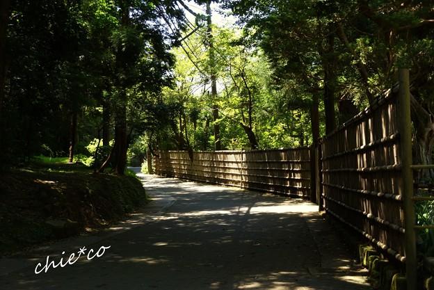 北鎌倉-124