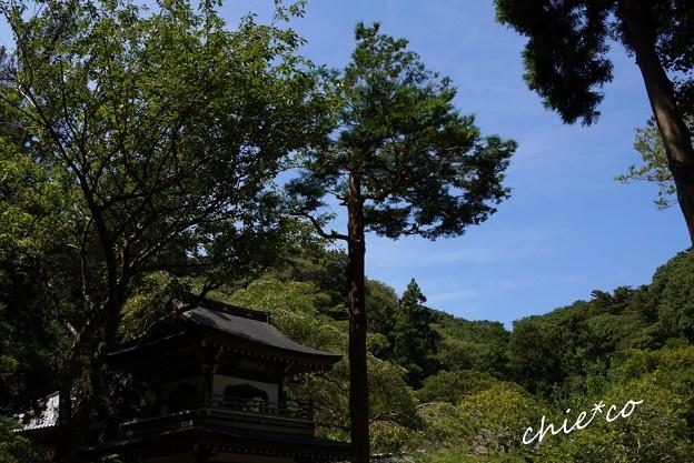 北鎌倉-125