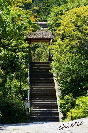 北鎌倉-252