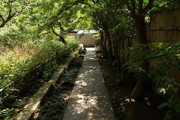 長月の円覚寺-065