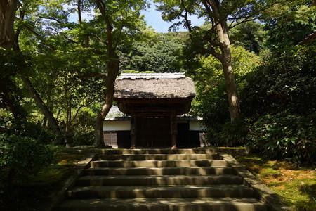 長月の円覚寺-120